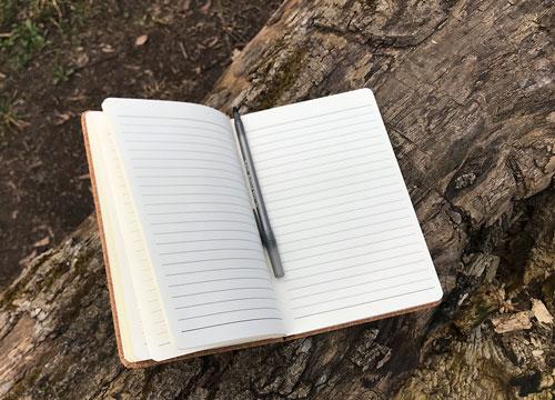 Kreativitätstechniken, Brainstorming, Notizbuch
